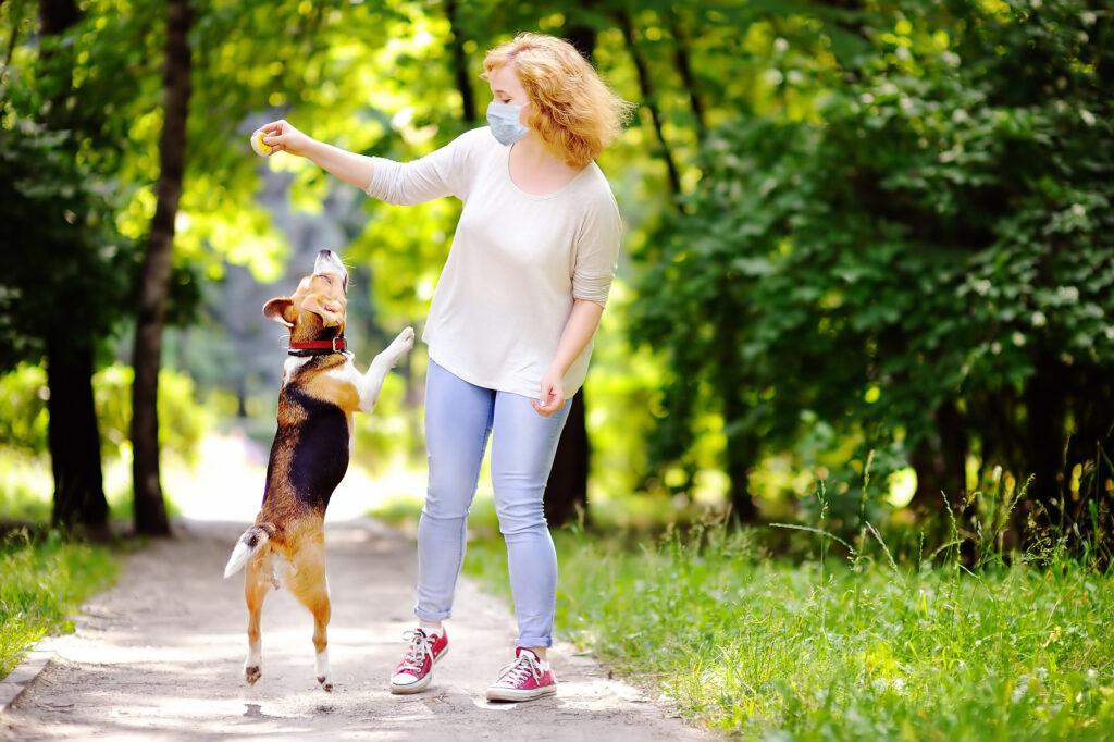 Frau mit Schutzmasek spielt im Park mit Ihrem Hund